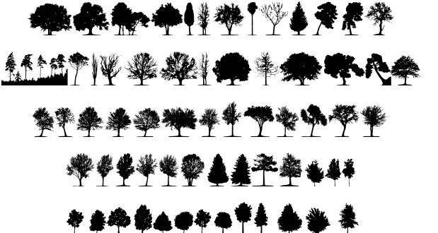 tree fonts