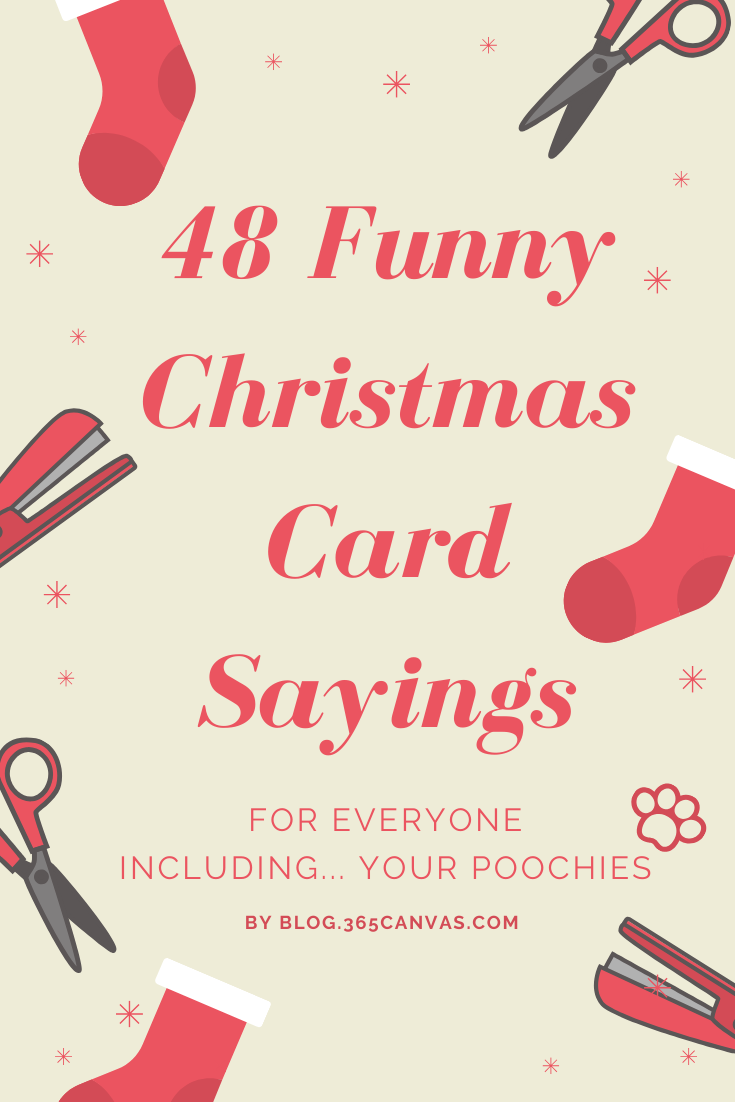 80 Funny Witty Christmas Card Sayings For Holiday 2020   365Canvas