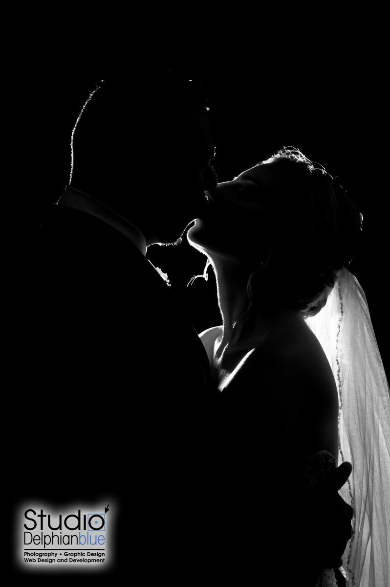 Silhouette of Bride and Groom. Photography by Danielle Albrecht, Studio Delphianblue, LLC. Please visit www.delphianblue.com to book your MN, WI, or IA wedding!