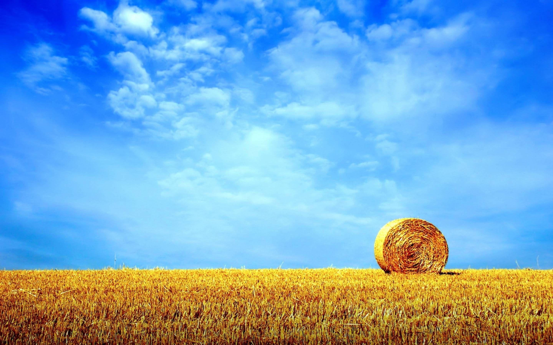 Summer HD Images. | Summer desktop backgrounds, Summer ...