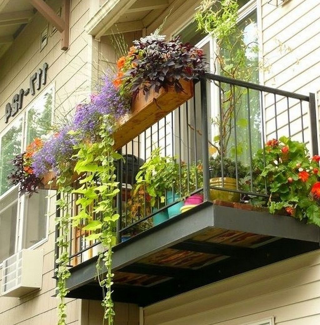 10 plants balcony ideas