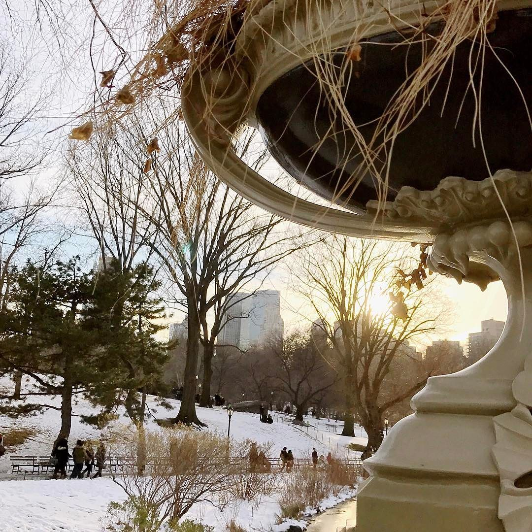 It's sad to think that all this pretty snow is gone now. Can't the weather figure itself out? ... #centralpark #iloveny #nyc #manhattan #weekend  #instagood #photooftheday #latergram #winter #winterdays #beautifuldestinations #cityscape #skyline