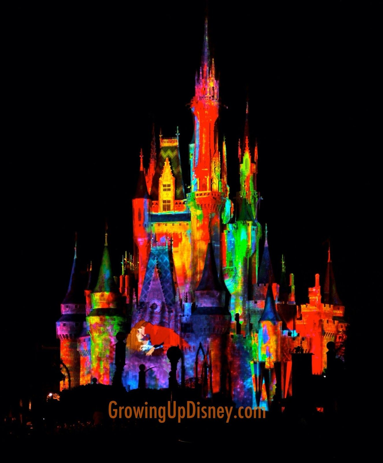 Celebrate the Magic! Castle Projection Show Disneyland
