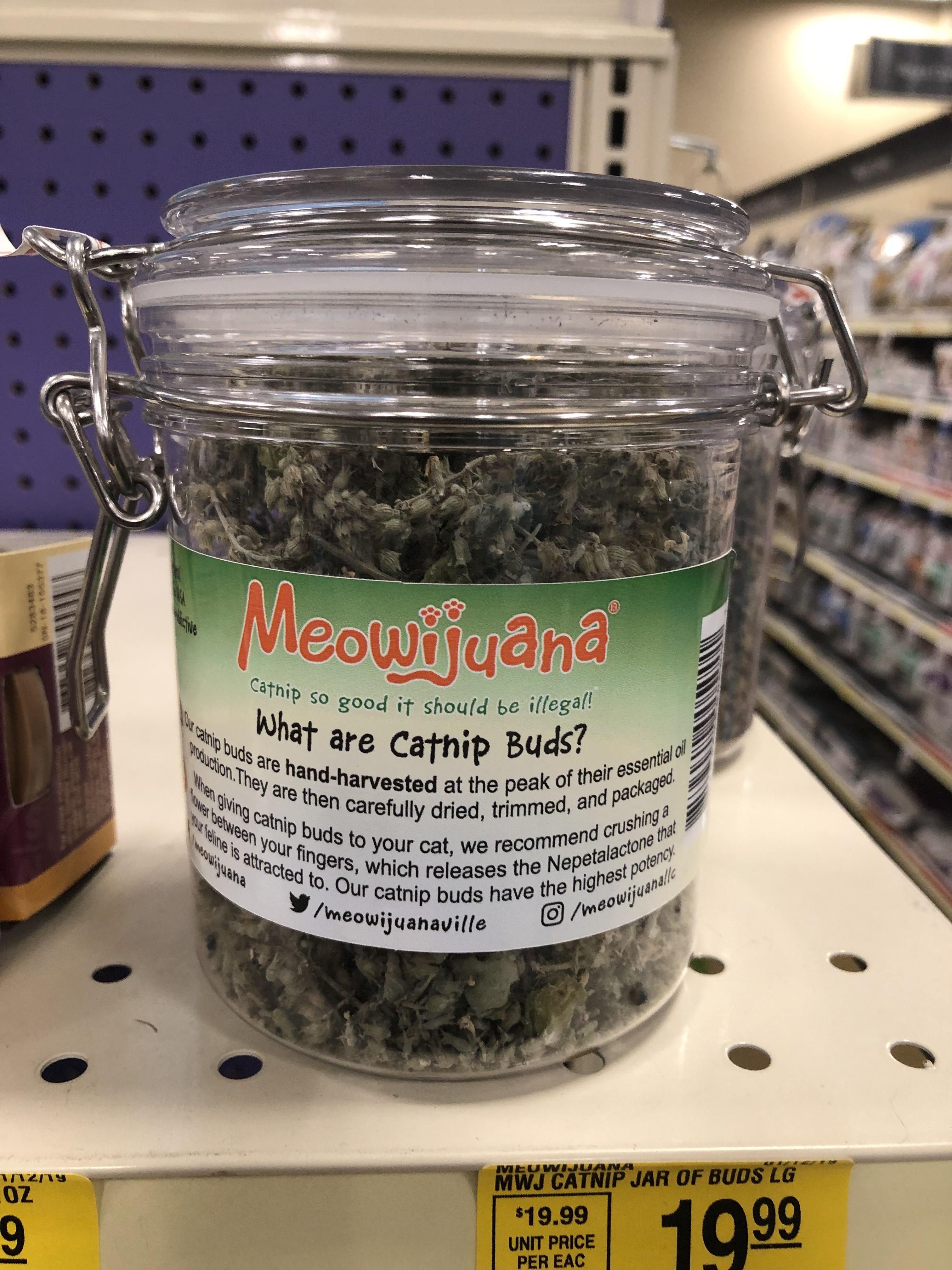 Found This In Petsmart What Do You Guys Think About Catnip Catnip Petsmart Cat Pics