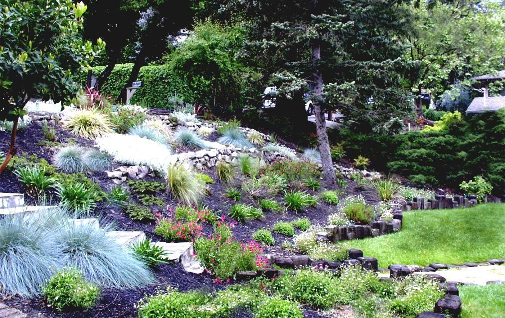 home garden designs landscaping a hillside ideas on steep hill landscape orinda - Garden Design On A Hill