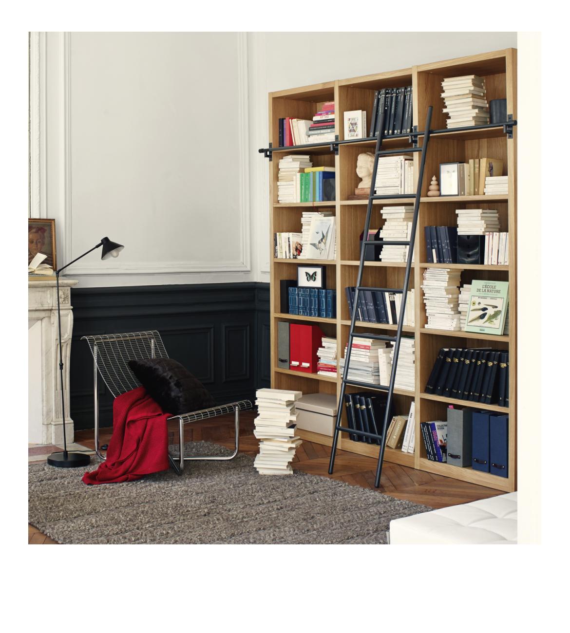 Camus Ii Biblioth Que En Bois Avec Son Chelle Habitat Huis  # Habitat Meuble De Tele