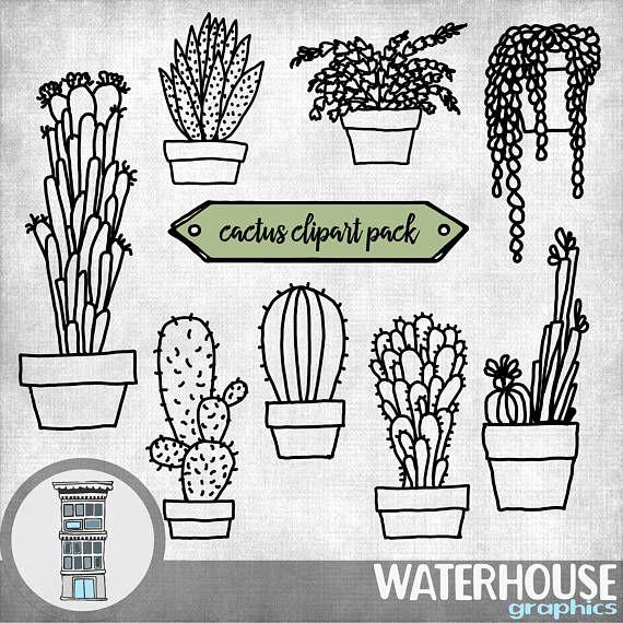 Cactus Clip Art Digital Hand Drawn Cacti Succulents Clipart Etsy Clip Art How To Draw Hands Art Set