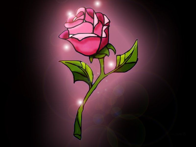 A New Version Of The Enchanted Rose From Beauty And Beast Belong To Disney 2
