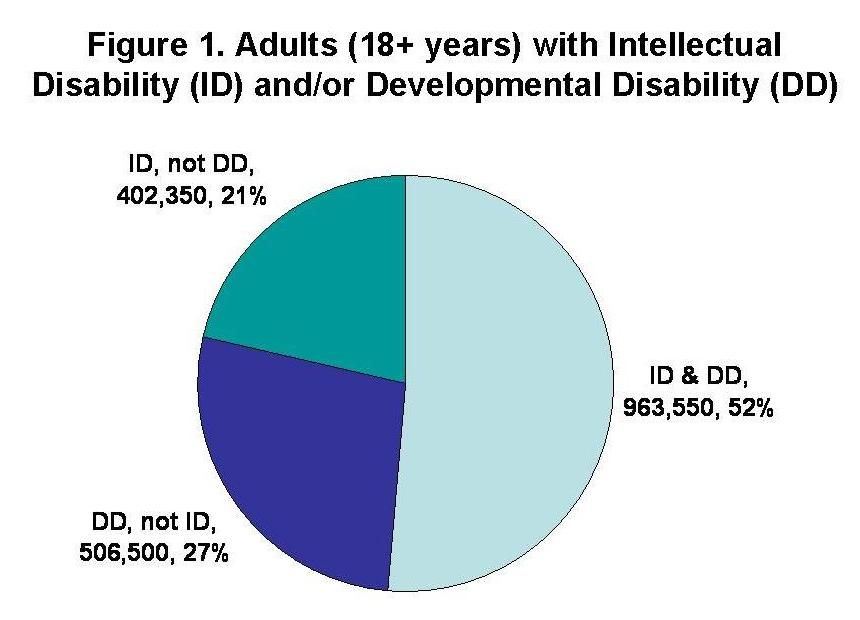 The Supply of Direct Support Professionals Serving Individuals with  Intellectual Disabilities and Other Developmental Disabilities: