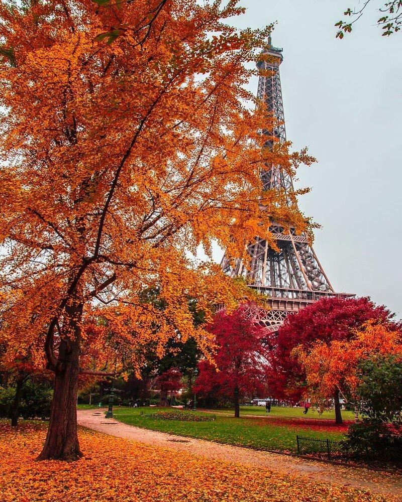 Яркий мир Хатиса Коркмаза. Часть 2 #autumnscenery