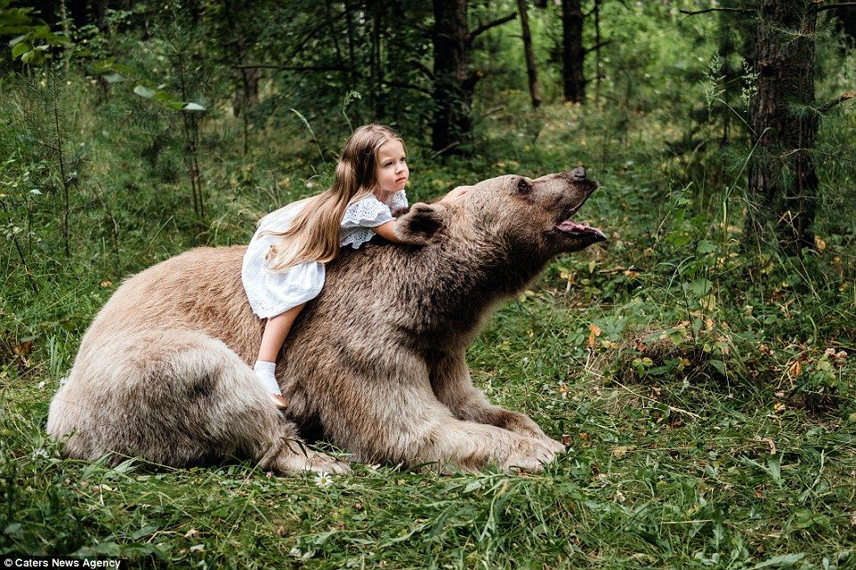 Kids Pose With A Tame Grizzly Bear In The Forest In Moscow