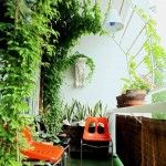 If you live in an apartment where there is a small balcony and you often wonder what to do with the small space, then this blog will give you some of the refreshing ideas that will brighten up your mind as well as your balcony. You can do a lot of...