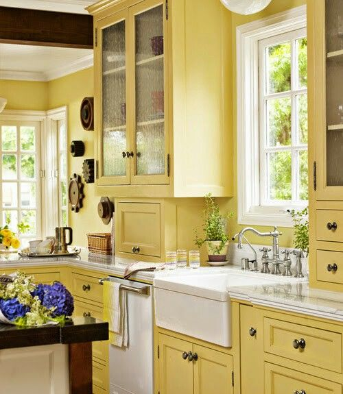 Simple Nice Yellow Kitchen Color Design