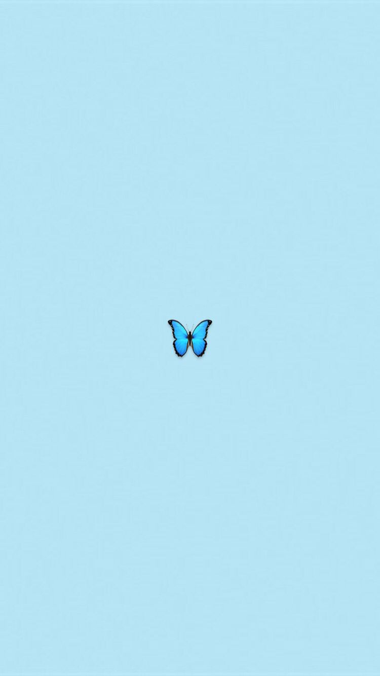 Pin By Brii On Wallpaper Blue Wallpaper Iphone Blue Butterfly Wallpaper Wallpaper Iphone Cute