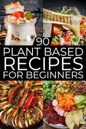 Plant Based Diet Meal Plan For Beginners: 21 Days of Whole Food Recipes To Help You Lose Weight  Plant Based Diet Meal Plan For Beginners: 21 Days of Whole Food Recipes To Help You Lose Weight        Plant Based Diet Meal Plan for Beginners. If you're looking for tips on how to start a Plant-Based Diet to lose weight or eat healthier then check out this beginner's guide to the Plant-Based Diet! You'll find grocery lists and 90 simple clean eating recipes for breakfast, lunch, and dinner! With m #plantbasedrecipesforbeginners