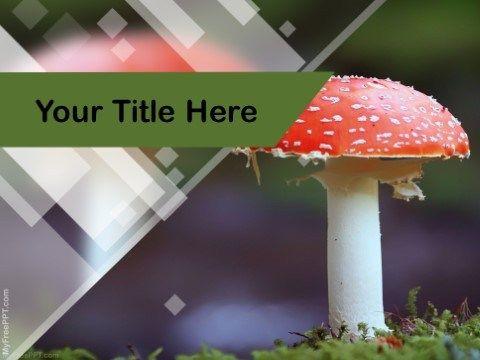 Free mushroom ppt template studio pinterest ppt template free free mushroom ppt template toneelgroepblik Image collections