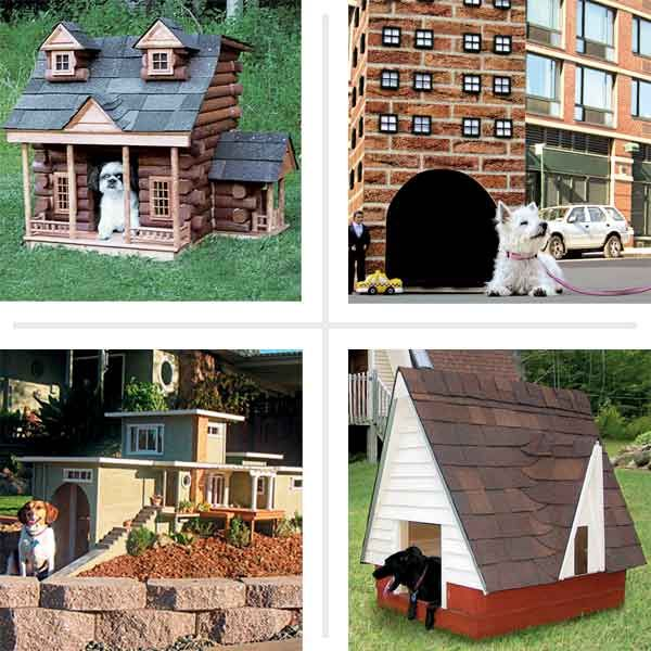 16 Doghouses Like Your House