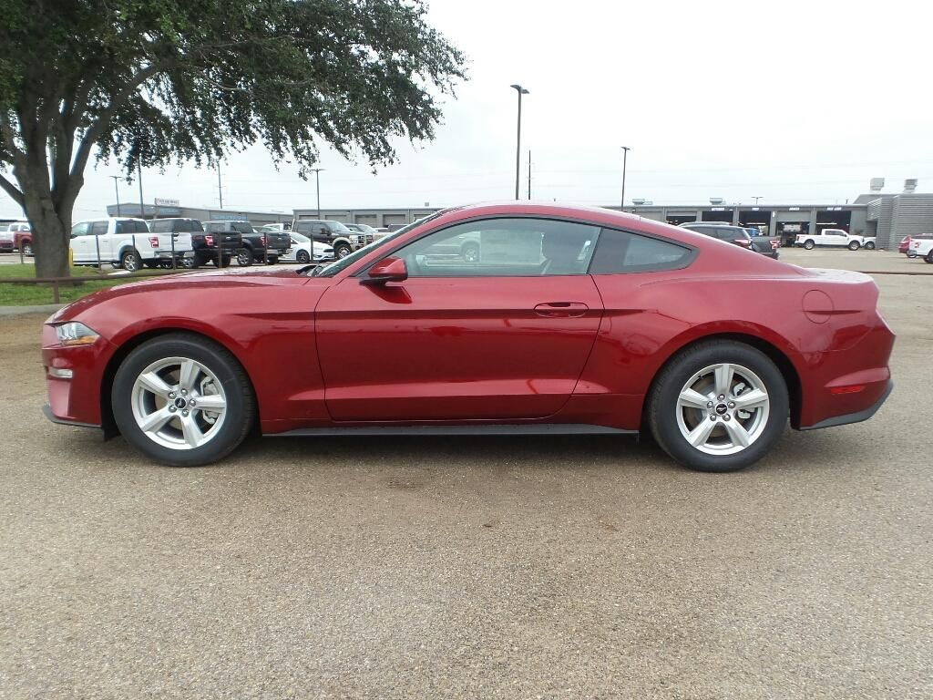 2019 ford mustang for sale in edinburg tx near mcallen hacienda rh pinterest com