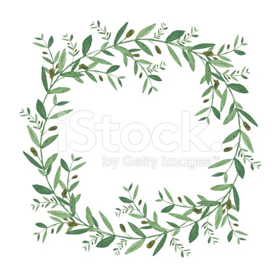 Watercolor Olive Wreath Isolated Illustration On White Background