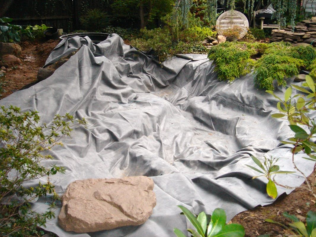 learn about fish pondliner installation in rochester monroe