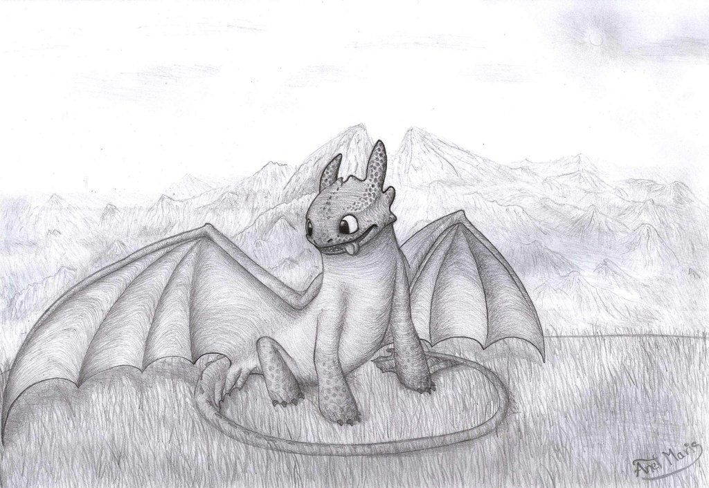 http://fc09.deviantart.net/fs70/i/2014/101/0/3/toothless_night_fury___how_to_train_your_dragon_2_by_hicctoothfan-d7e3p9c.jpg