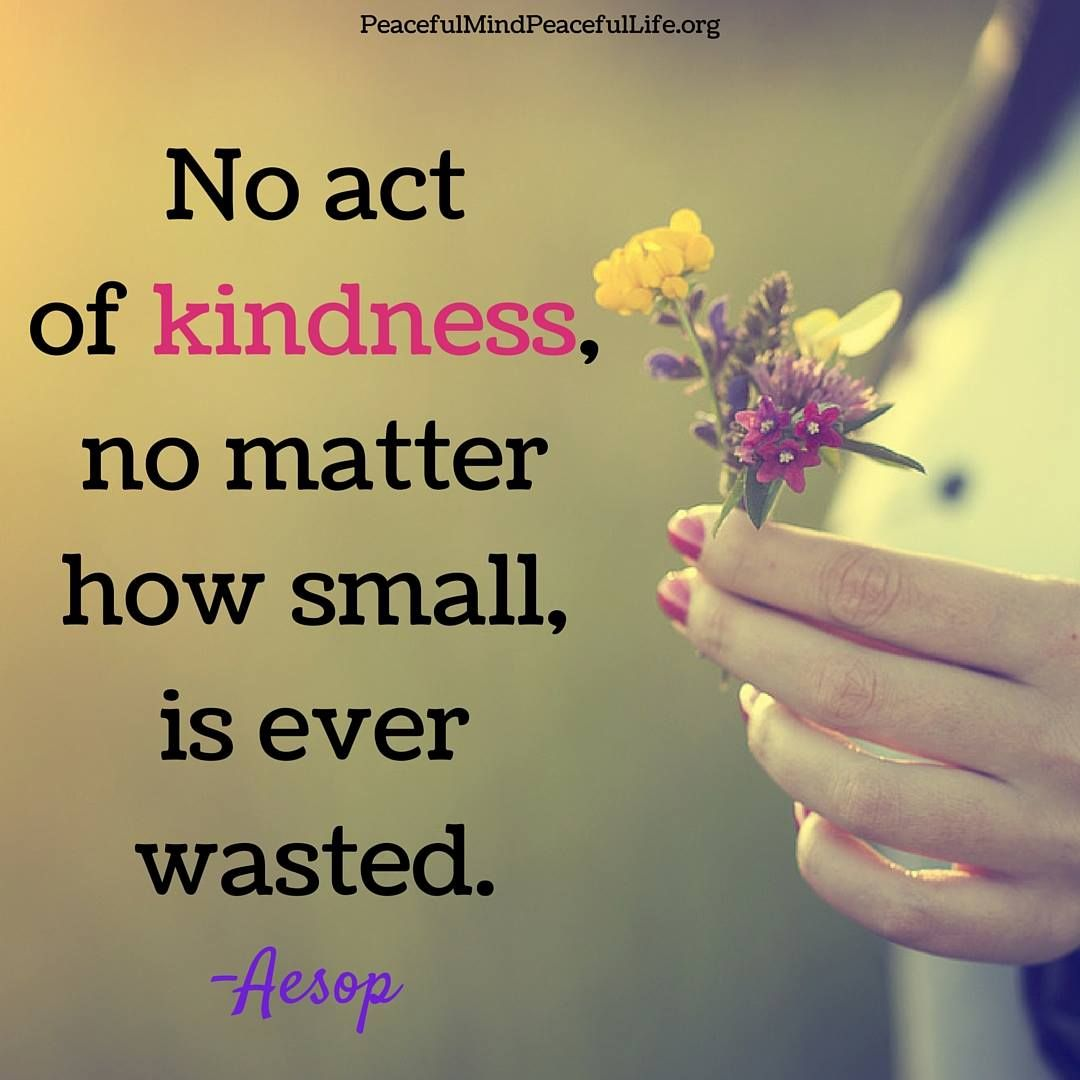 "Quote About Kindness No Act Of Kindness No Matter How Small Is Ever Wasted."" Aesop"