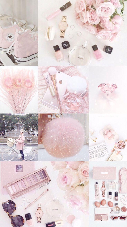 Cute Pink Rose Aesthetic