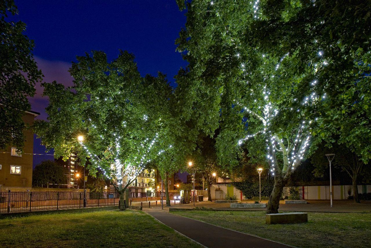 MG_2941a-tree-lights.jpg (1280×854)