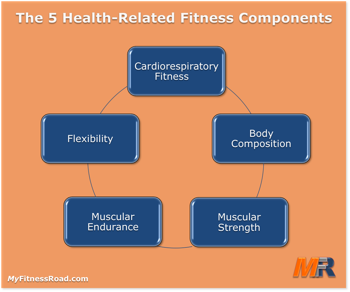 All Worksheets 5 ponents Health Related Fitness Worksheets