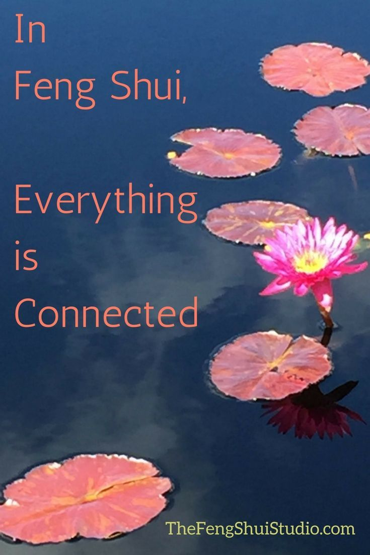 Add some Feng Shui meaning to your life. When you understand that ...