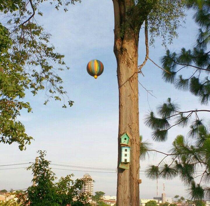 Avenida Galileu Bicudo A criatividade tomando seu espaço.