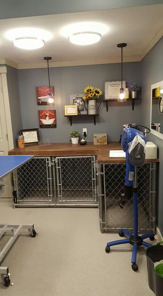 This would be great for the tool bench in the garage   Dog ...