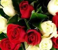 Картинки по запросу Animated pictures of roses download