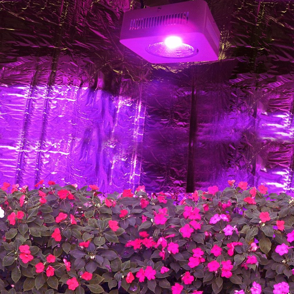 Full Spectrum Led Grow Lights Reviews 1000w Led Grow Light Best Led Grow Lights Grow Lights Led Grow Lights
