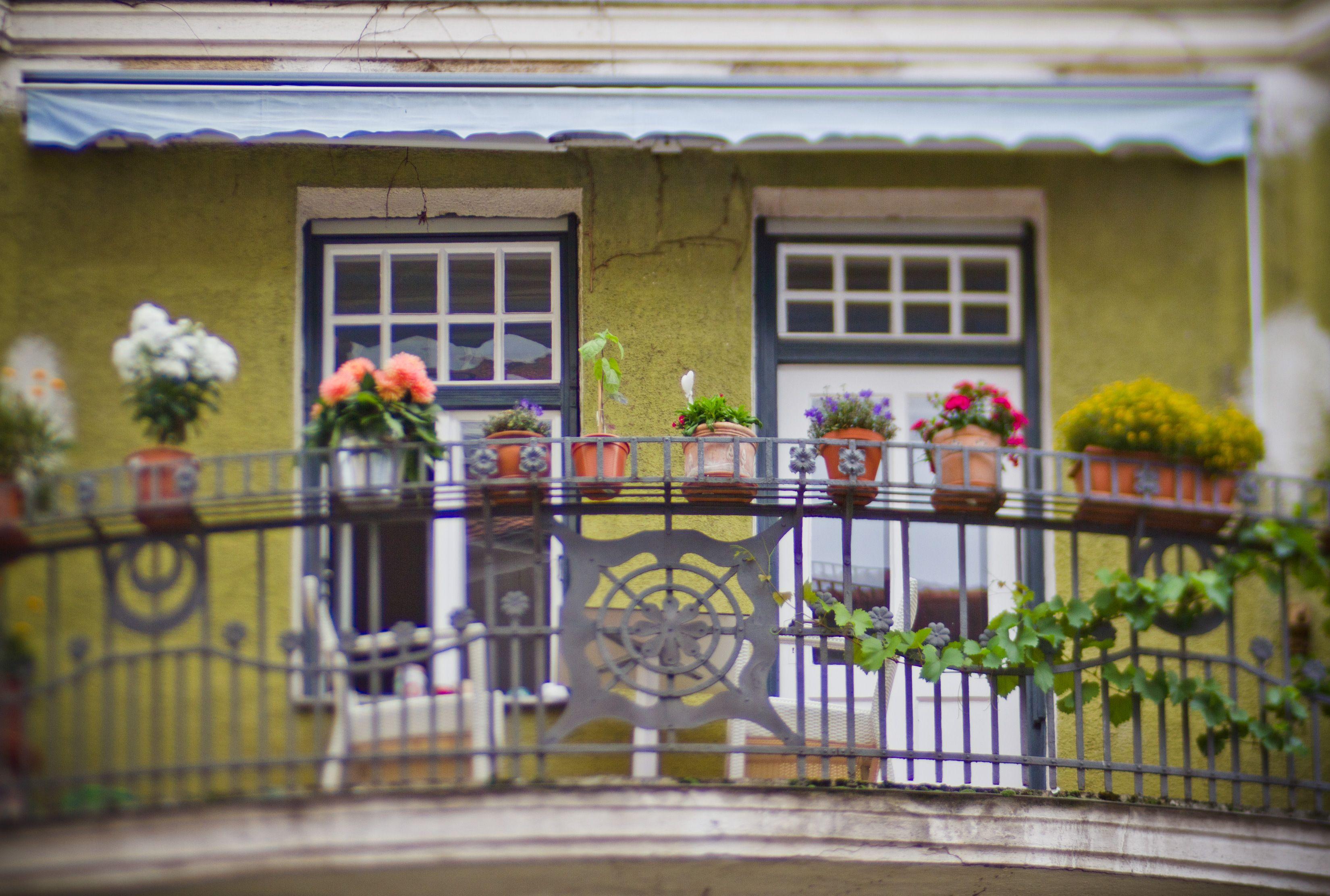 Wohnen, Leben, Nachbarschaft, Lifestyle, Kiez, Stadtteil