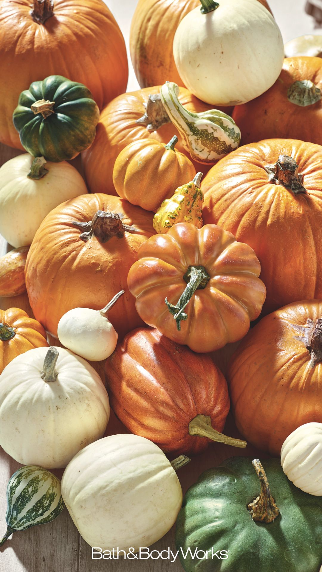 Pin by Ashlee Collins on iPhone wallpapers Pumpkin