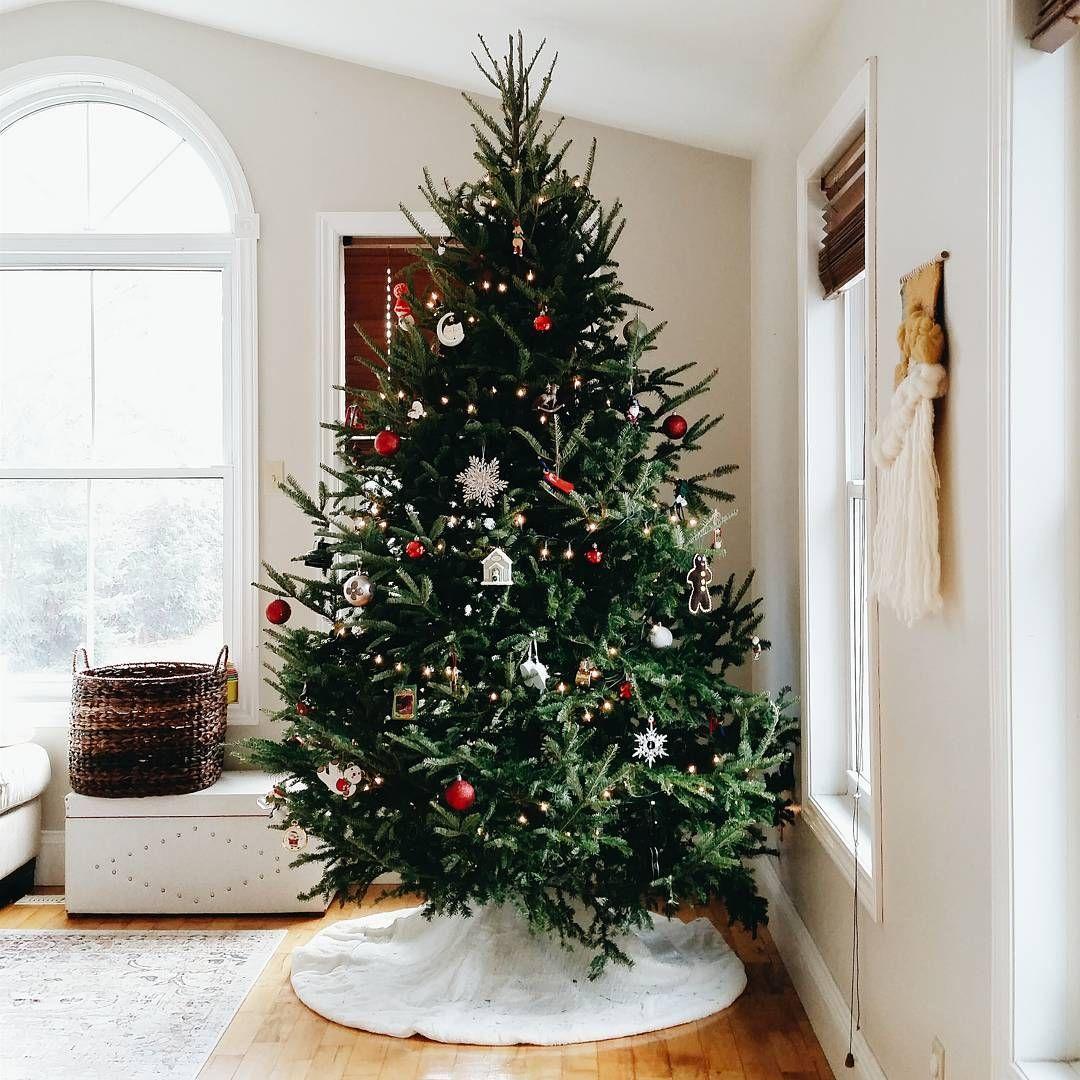 ‖ httpsbrooke Árbol de Navidad