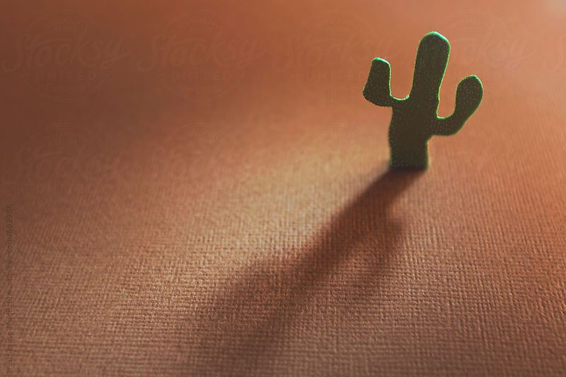 Paper Cactus in a Paper Desert... by CatMacBride | Stocksy United