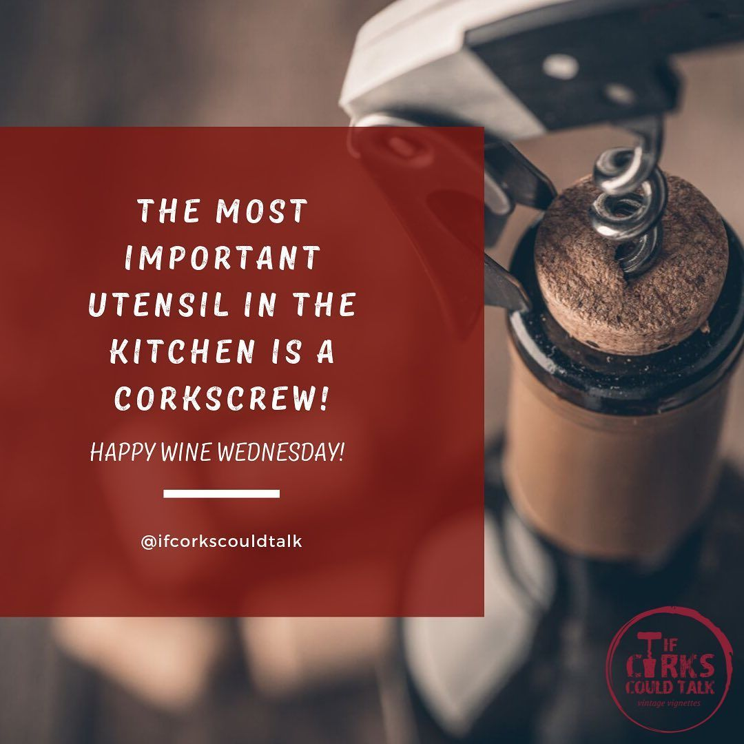 What is everyone doing for their Wine Wednesday? 🍷  #winelovers #bloggerswanted #write #wine #journal #love #ifcorkscouldtalk #instawine #gift #food #winepairing #winenight #fun #winestagram #winelover #winetime #wineandfood #fallwine #fall #season #weather #winewinewine  #winememes #winememe #winetime🍷  #memes #wineme #winewednesday #winewednesdays