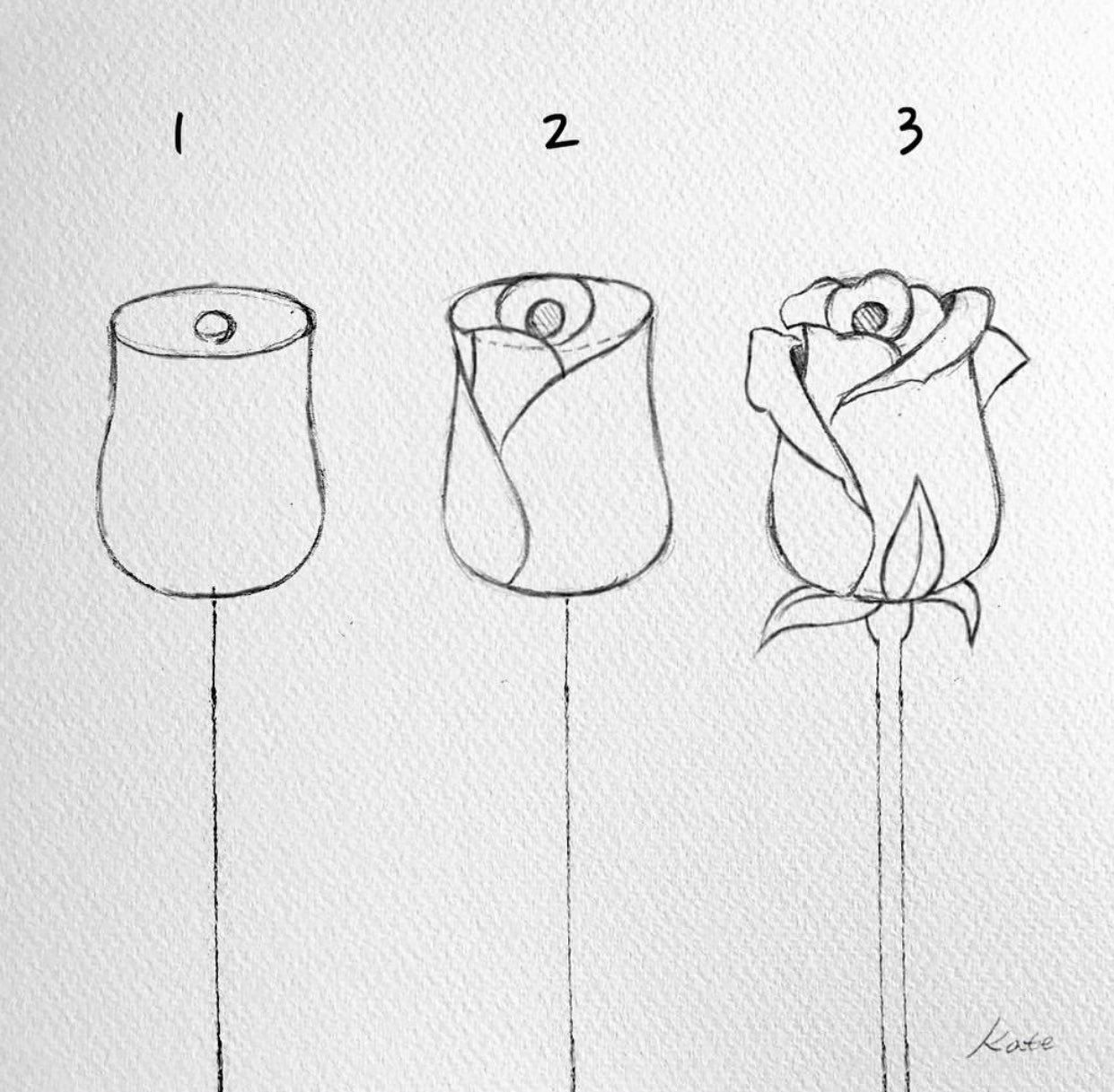 ميلورا On Twitter Blumen Zeichnen Zeichnen Fur Anfanger Zeichnung Solch ein weihnachtsgeschenk wuerde jeder frau gut gefallen. ميلورا on twitter blumen zeichnen