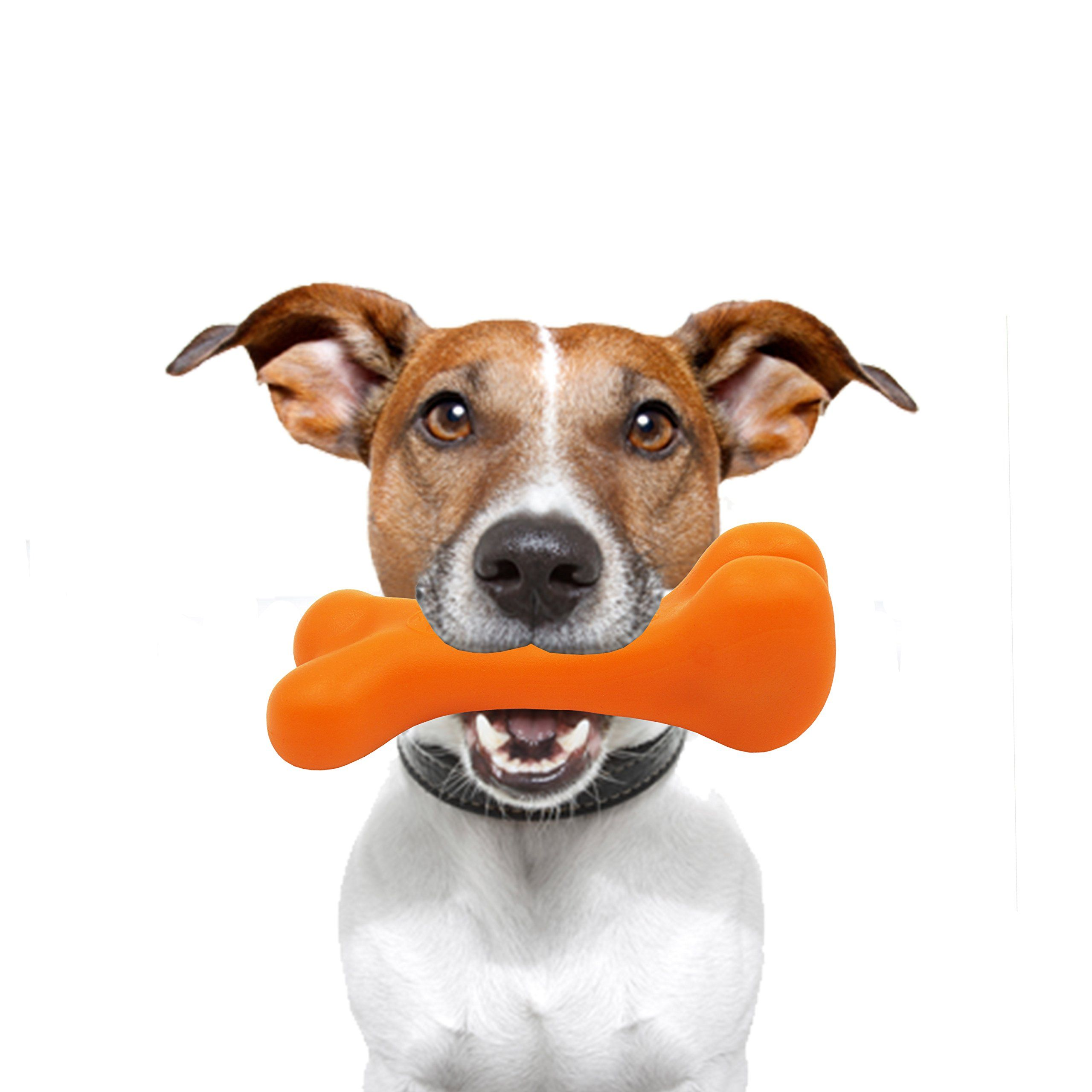 Durable Dog Chew Toys Great Puppy Teething Toys. Promotes Healthy ... | Healthy Chew Toys For Dogs