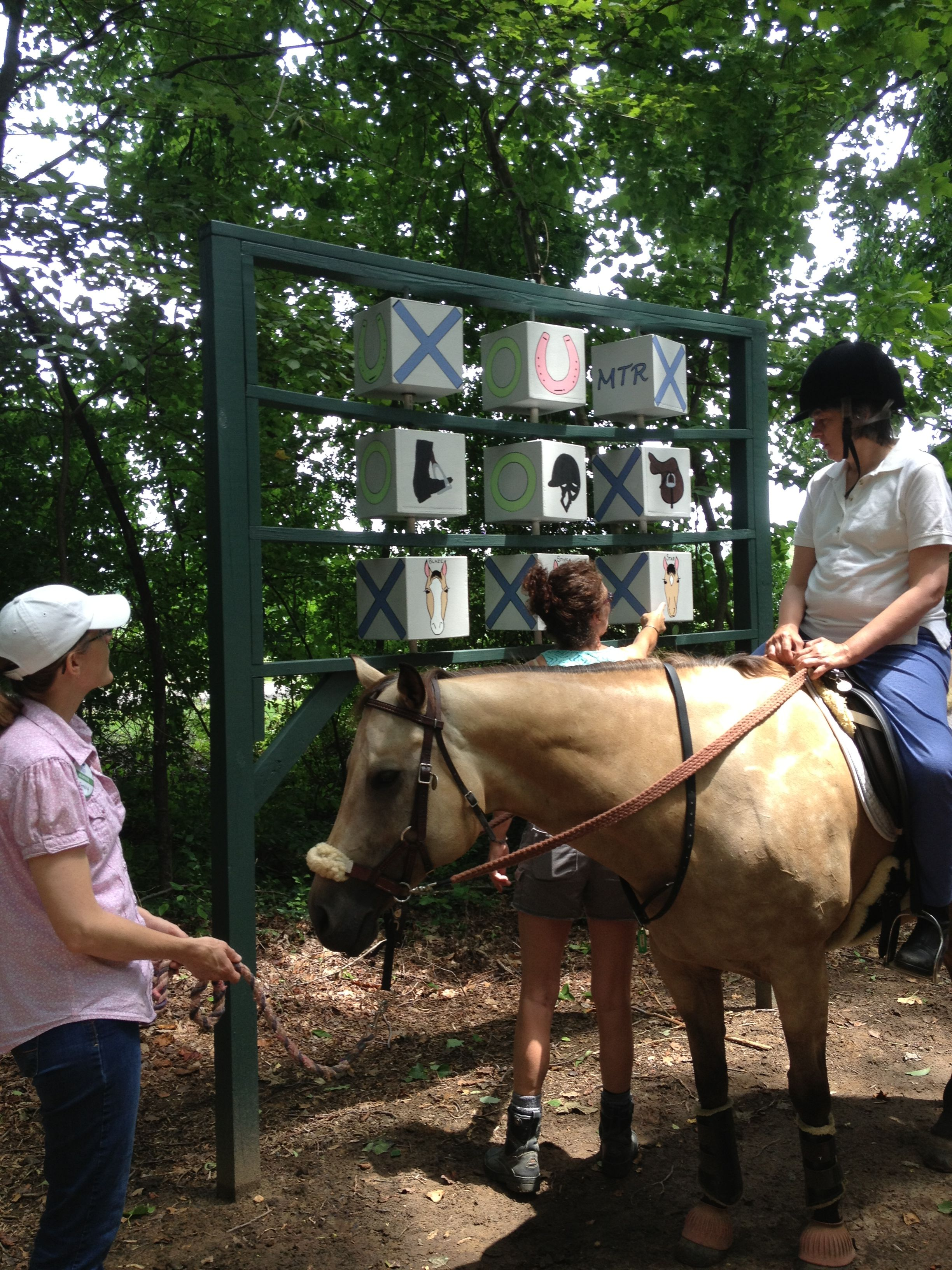 Pin on Equine Therapy