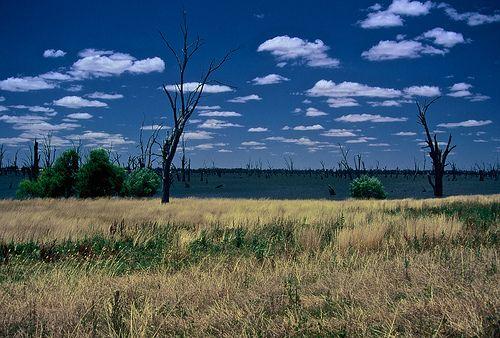 Australia - http://bookcheaptravels.com/australia/ - Australia  Image by Paul D'Ambra - Australia Australia  Flickr - www.flickr.com/photos/behindthesteeringwheel/sets/ Instagram - instagram.com/pauldambraau Pinterest - pinterest.com/pauldambra/boards/ Triptease - triptease.com/profile/paul-dambra/reviews Facebook - www.facebook.com/pdambra - Australia