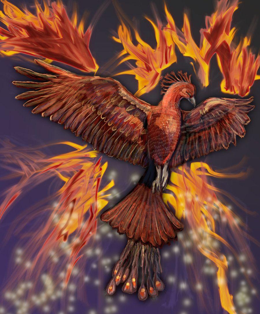 сейчас поговорим птичка феникс картинки одно
