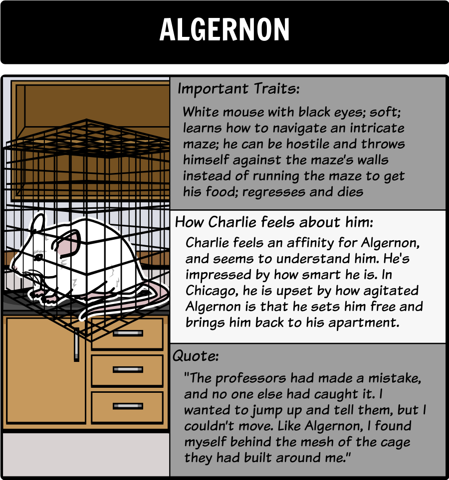 flowers for algernon literary conflict in this activity flowers for algernon character map as students a storyboard can serve as