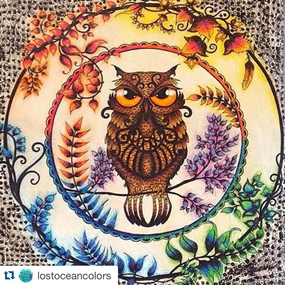 Esrarengiz Bahce Gizemli Orman On Instagram Esrarengiz Bahce Yi Bit Enchanted Forest Coloring Book Enchanted Forest Coloring Johanna Basford Enchanted Forest