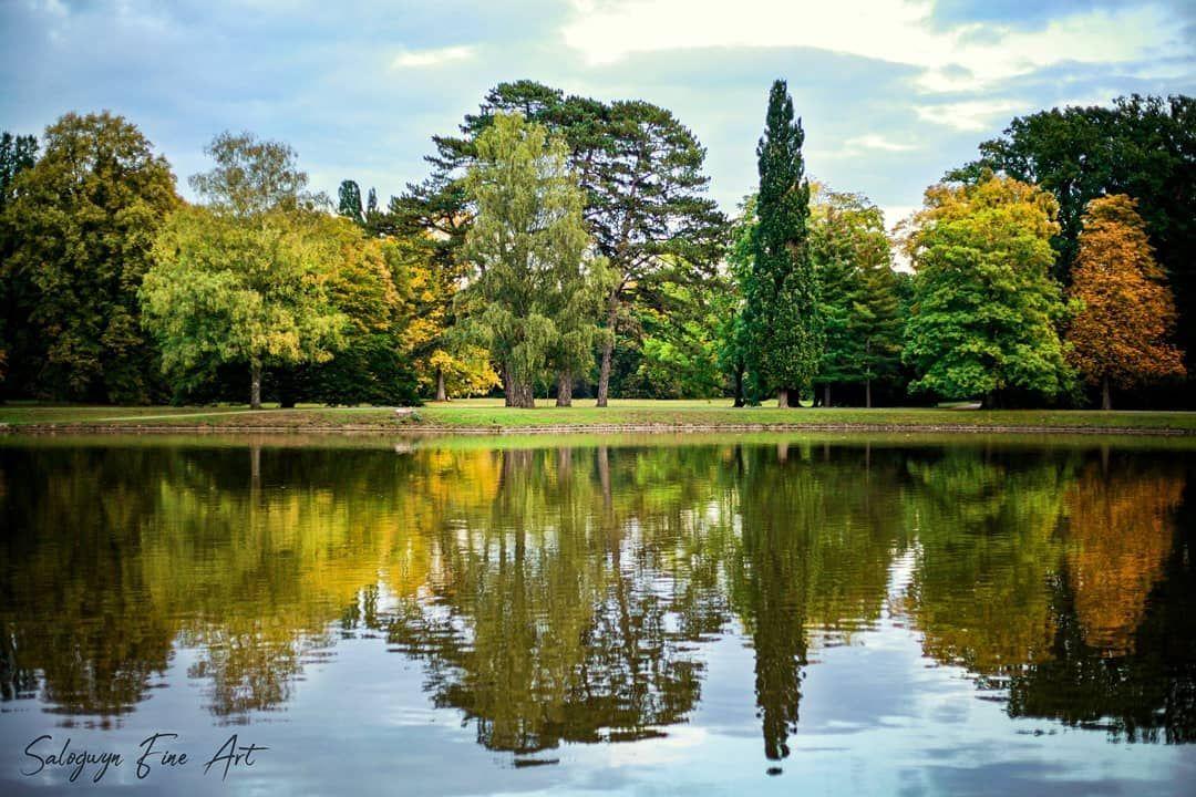 Autumn lights. Kassel, Karlsaue.  Photographer: @salogwyn_fine_Art  #nature #naturelovers #casselfornia #kassel #kasselfornia #wonderful_places #wonderfullife #beautifulnature #beautifullight #motherearth #worldbestshot #seascape #photography #divine_worldplaces #challenge #photooftheday #photoshoot #colorful #gurushotschallenge #gurushots #shotaward #ig_mood #autumn #autumnvibes🍁 #amazing_shots #tree #treeoflife #tree_shotz #tree_pictures #color #colorful