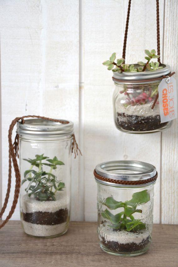 terrarium nos tutos custos terrarium mason jars et jar. Black Bedroom Furniture Sets. Home Design Ideas