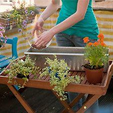 Frühlingsblumen für den Balkon - Schritt-für-Schritt-Anleitung für schöne Blumenkästen. ⎜GU