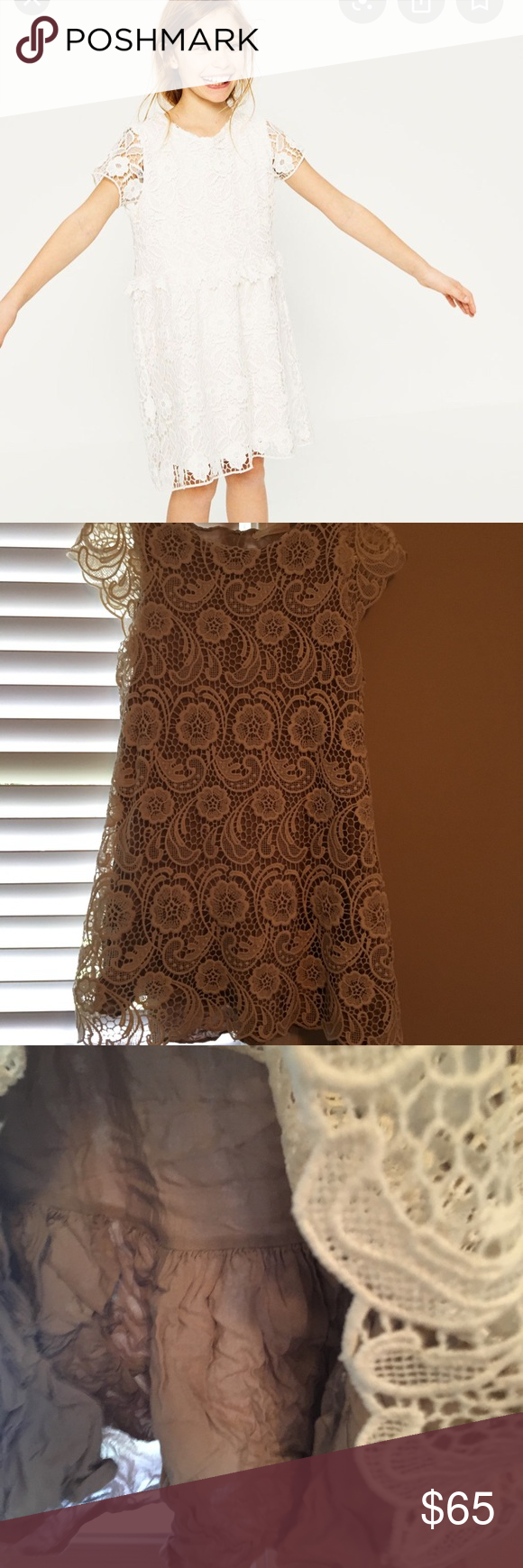 Zara Crotchet Dress NWOT.  Will need to be ironed in the back.  No flaws or holes or smells.  Working zipper in the back. Zara Dresses Casual